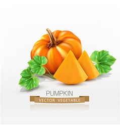 Pumpkin and pumpkin slices isolated vector
