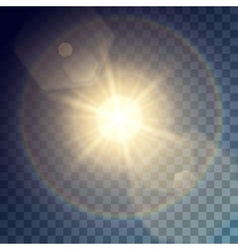 golden sun with light effects vector image