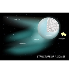 Structure of a comet vector