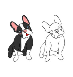 cute french bulldog vector image