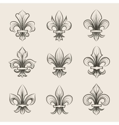 Engraving fleur de lis icons set vector image