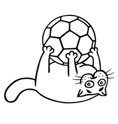 Fat cat is caught a soccer ball isolated vector
