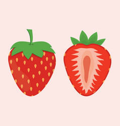 strawberry on the white background vector image