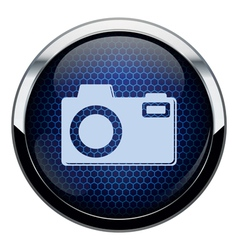 Blue honeycomb photo icon vector image