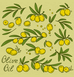 Isolated olive branches set vector