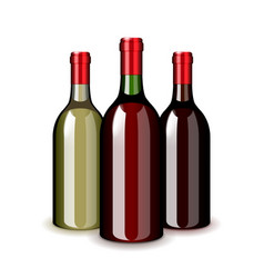 three wine bottles isolated on white vector image vector image