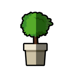 tree pot plant nature decoration shadow vector image