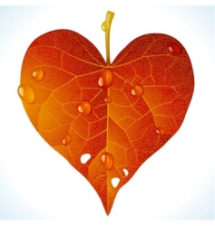 autumnal love vector image
