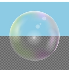 Realistic Soap bubble vector image