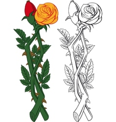 rose and dogrose vector image vector image