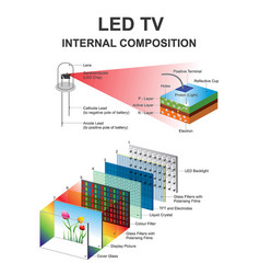 Internal composition led structural vector