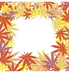 frame marijuana leaves vector image