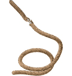 Old rope vector