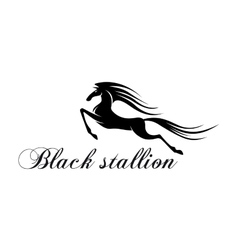 Silhouette of a jumping horse for mascot design vector image