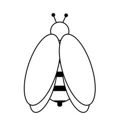 Bee insect icon image vector