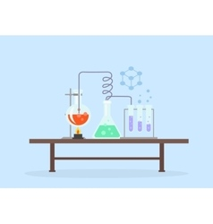 Biology Laboratory Workspace and Science Equipment vector image