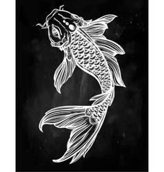 Elegant koi carp fish vector