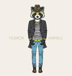 Fashion raccoon vector