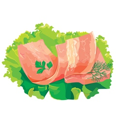 meat with salad vector image