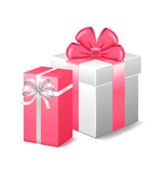 Two gifts isolated on white vector