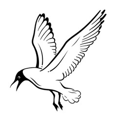 Simple seagul isolated on the white vector