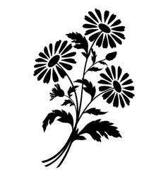 Chamomile flowers silhouettes vector