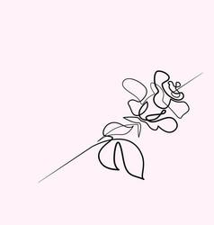 beautiful rose flower logo vector image