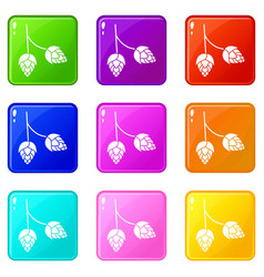 Branch of hops icons 9 set vector