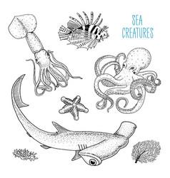 Fishes or sea creature octopus and squid calamari vector