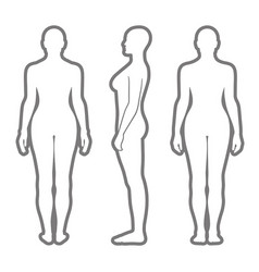 naked standing woman silhouette vector image