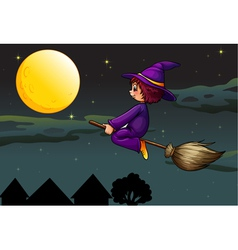 witch on broom vector image vector image