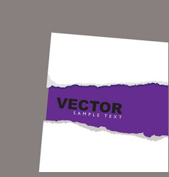 Torn paper reveal purple vector