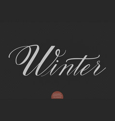 hand drawn lettering winter elegant vector image vector image