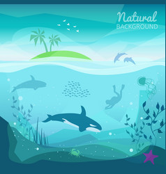tropical sea natural background vector image vector image