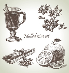 Set of mulled wine fruit and spices hand drawn il vector