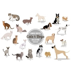Set of flat sitting or walking cute cartoon dogs vector