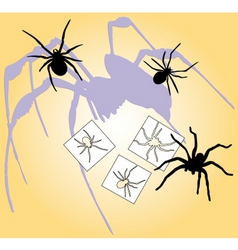 spiders escape vector image vector image