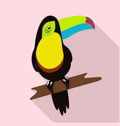 tropical bird tukan vector image vector image