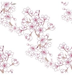 Seamless pattern sakura vector