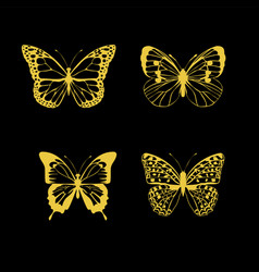 butterfly gold vector image