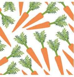colorful background with pattern of carrots vector image