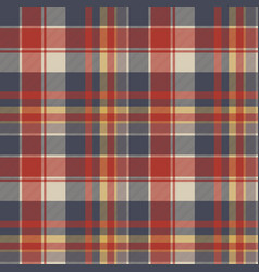 red blue tartan fabric texture seamless pattern vector image vector image