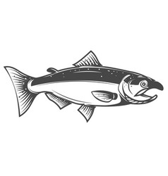 Salmon icon isolated on white background seafood vector