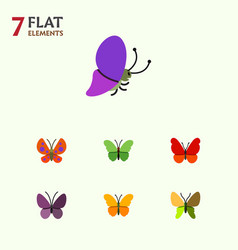 Flat monarch set of summer insect beauty fly vector