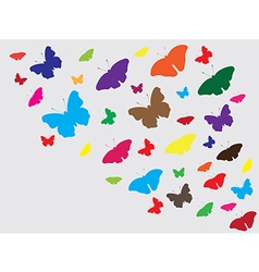 Butterfly abstract background vector image