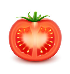 Big ripe red fresh cut tomato isolated vector