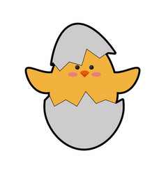 Chick egg shell vector