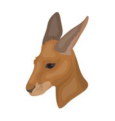 Kangaroo icon in cartoon style isolated on white vector