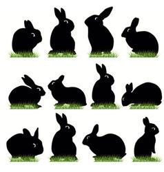 rabbit02 vector image vector image