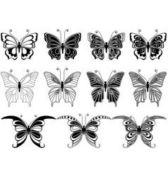 set of eleven ornamental butterflies vector image vector image